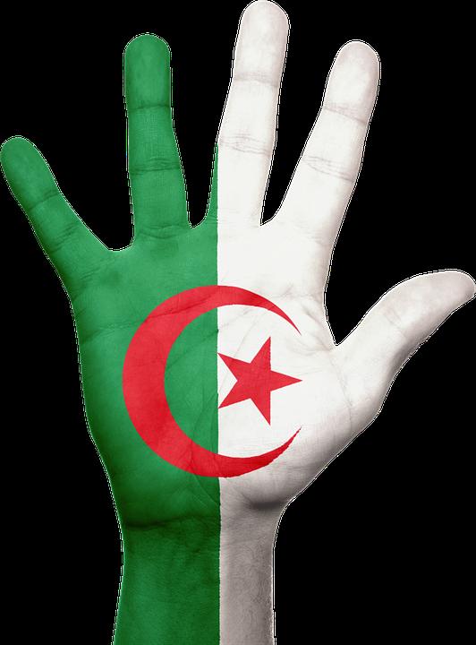 Assurance Plaque Algérienne en ligne