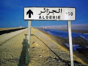 assurance plaque algérienne en ligne, immatriculation algérienne