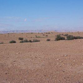 desert, Assurance Internationale Tunisie, voiture assurée désert