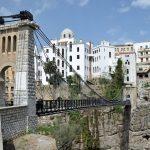 Pont Algérie, Manifestations, Bouteflika